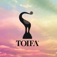 TOIFA Awards Winners List of 2013