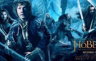 The Hobbit The Desolation of Smaug  Movie Poster 5