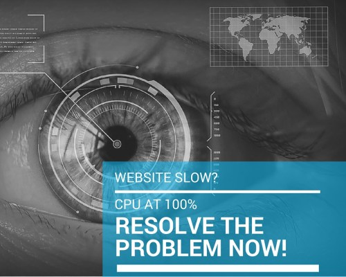 Website slow? CPU at 100%? Resolve the problem now!