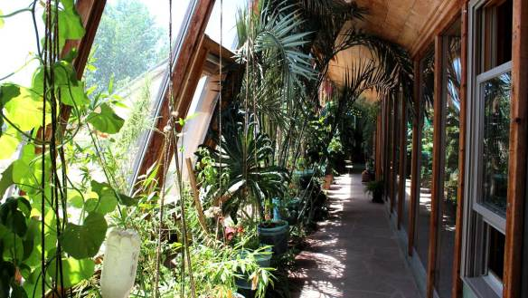 Growing food in an Earthship greenhouse