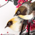 Close-Up_birds