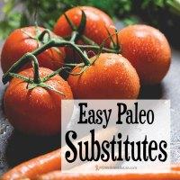 Easy Paleo Substitutes
