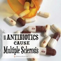 How Antibiotics Cause Multiple Sclerosis