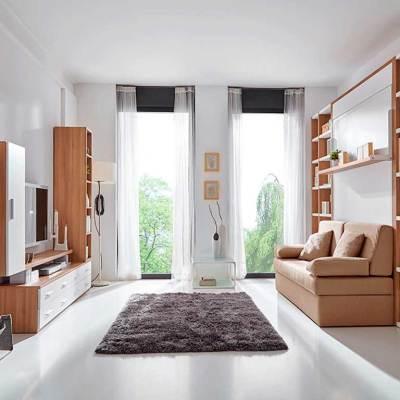 cama-abatible-matrimonio-y-sofa