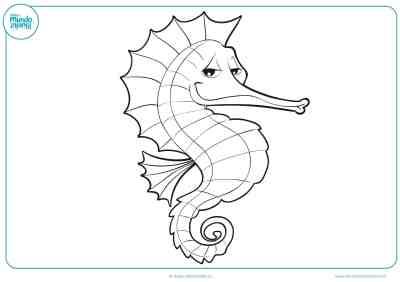 Dibujos de animales marinos para colorear - Mundo Primaria
