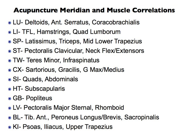 Correlations of Acupuncture Meridians and Muscles