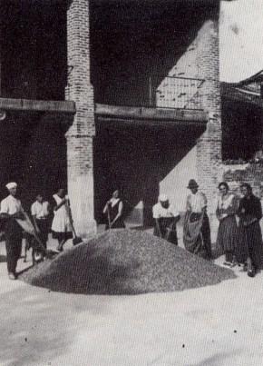 Insaccatura del grano presso cascina Berlendis - Anni '30