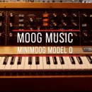 Moog Minimoog Model D Celldweller Demo