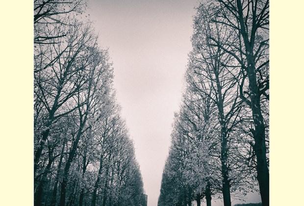 """The Feelies - """"In Between"""" - music album review"""