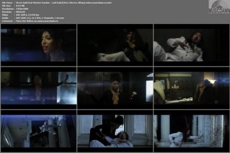Steve Aoki ft. Wynter Gordon - Ladi Dadi (2012, Electro, HD 1080p)
