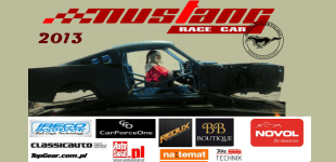 Mustang Race Car, podsumowanie 2013r