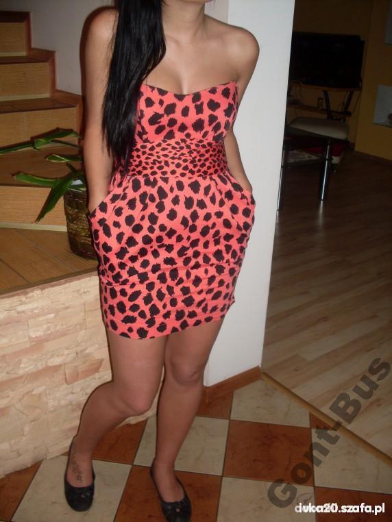 atmosphere-primark-leopard-gepard-sukienka