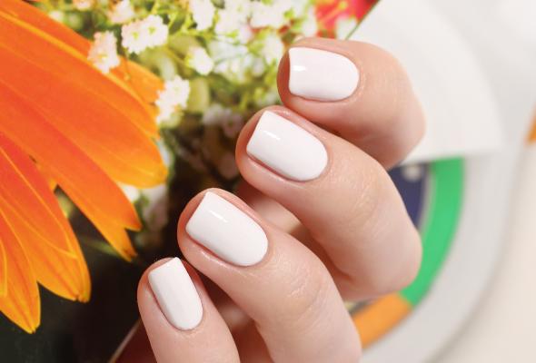 White nails swatch nail polish