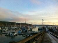 A frosty Friday Harbor, January 2013.