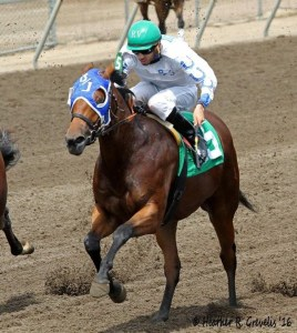 Faster Than Hasta wins the Minnesota Stallion Breeders' Futurity
