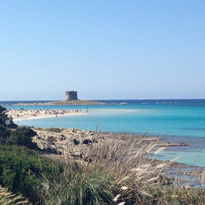 La Pelosa, one of the best beaches in Sardinia. Or in the world?