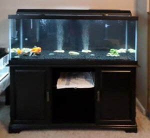 Top Fin Complete 75 Gallon Aquarium Kit