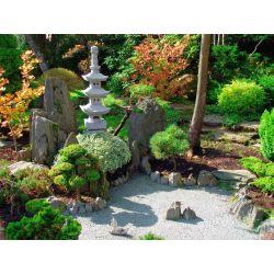 Small Crop Of Garden Backyard Designs