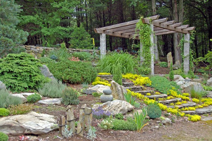 Simple Rock Garden Ideas With Pergola