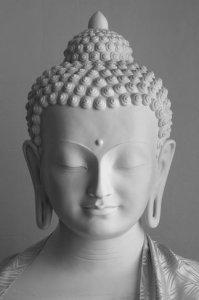 rsz_media7-buddha-shakyamuni-statue-1 (2)