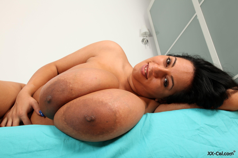 amanda torres huge boobs hardcore