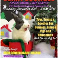 [Dec 10 Event] Bunny Boutique at EACC