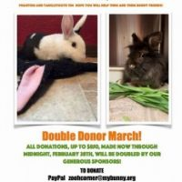Double Donor March