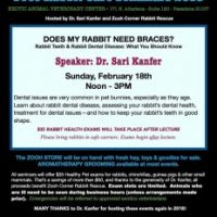 Does My Rabbit Need Braces? First Free Rabbit Health Seminar of 2018.
