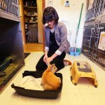 House Rabbit Society Featured in New York Times