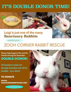 2015-11 Double Donor