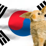 Korea Bans Cosmetics Animal Testing