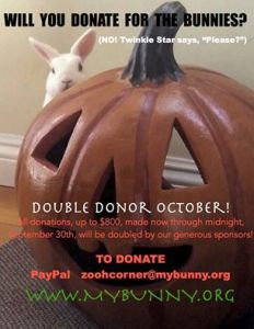 double-donor-october-2016