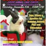 [Dec 10 Event] Bunny Boutique at EACC