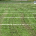 A borough parks employee continued mowing the Naugatuck High School football and soccer fields although the wheels of his heavy mower were sinking into mud Wednesday, cutting grooves in the field. The football field was leveled Thursday and the soccer field should be fixed today, Public Works Superintendent Robert Roland said. - RA ARCHIVE