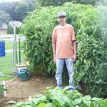 St. Michael's Church parishioner Rob Amaro stands in front of tomatoes grown in the church's Harvest Now garden last year. -CONTRIBUTED