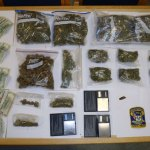 Police seized six gallon-sized plastic bags and multiple sandwich bags containing a total of 3 pounds, one-quarter ounce of marijuana, electronic scales and $3,455 in cash from a car driven by Nathan M. Araujo of Naugatuck in Derby Friday. –CONTRIBUTED