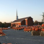 The Pumpkin Patch will open Oct. 5 at St. Anthony Church in Prospect. –CONTRIBUTED
