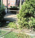 Green, gazebo remain in vandals' crosshairs
