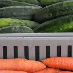 SLIDE_Vegetables