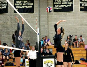 sp_volleyball1