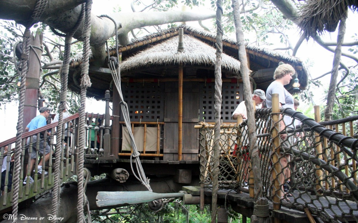 Exploring the Swiss Family Robinson Treehouse