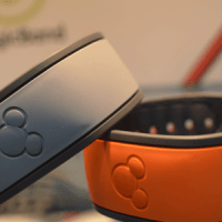 Deciphering the Magic Band Data