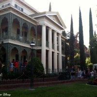 Magical Blogorail: Disneyland vs. Disney World