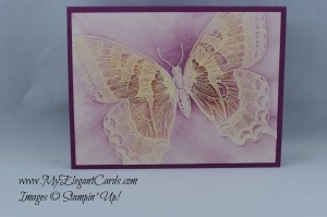 Stampin' Up! Swallowtail
