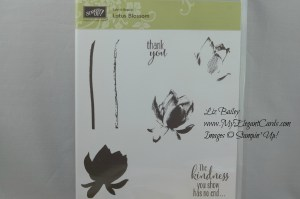 Stampin' Up! products for blog candy on My Elegants Cards