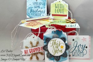 Liz Bailey Stampin' Up! Demonstrator - Tin of Tags Project Kit