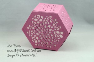 Liz Bailey Stampin' Up! Demonstrator - Window Box Thinlits Dies