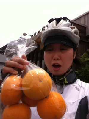 Gift_Oranges