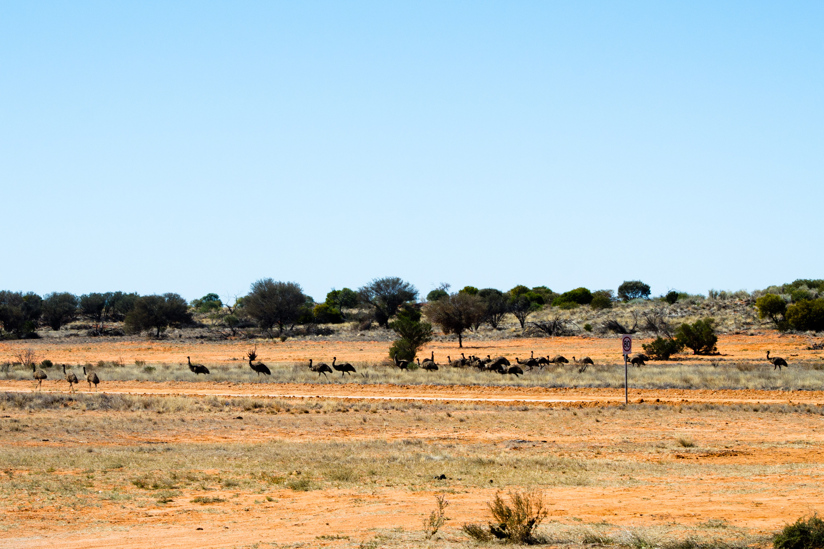 Brisbane to Birdsville via Adelaide {2013 4wd Trip} – Part 2