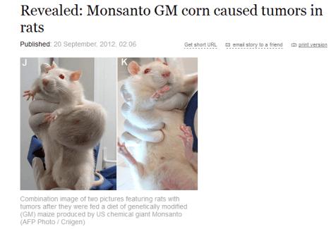 rat tumors